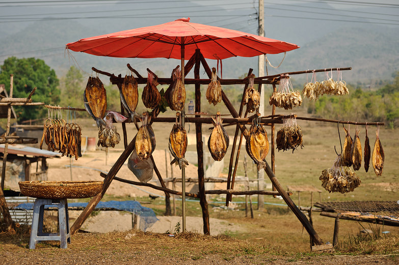 Dried Fish For Sale