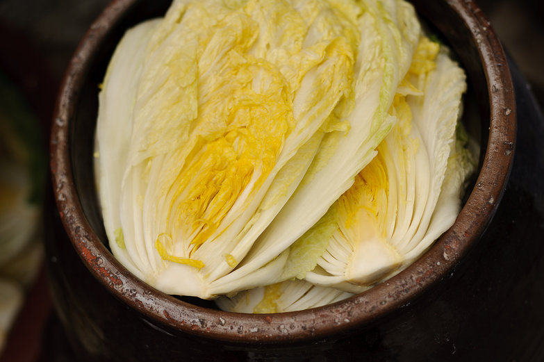 Cabbage for Kim Chi