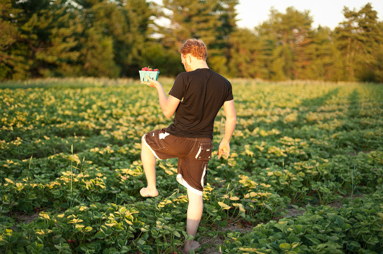 Tyler Picking Strawberries
