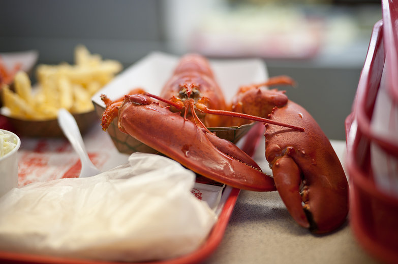 Lobster on a Tray