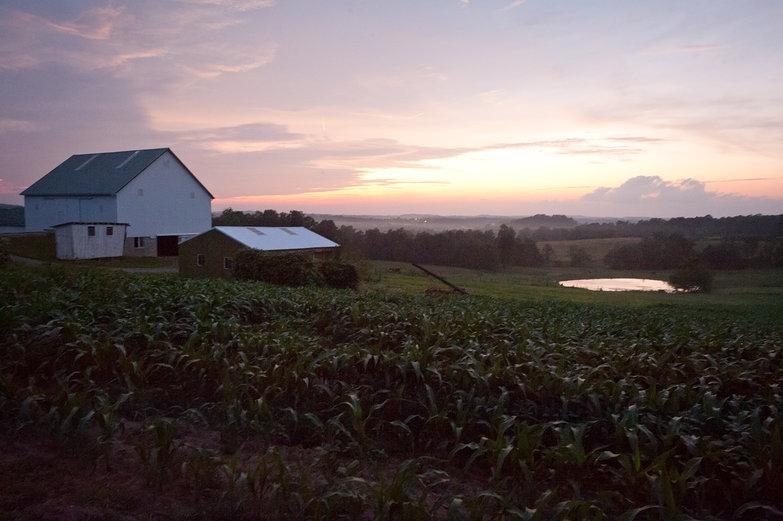 Purple Dusk on Amish Farm