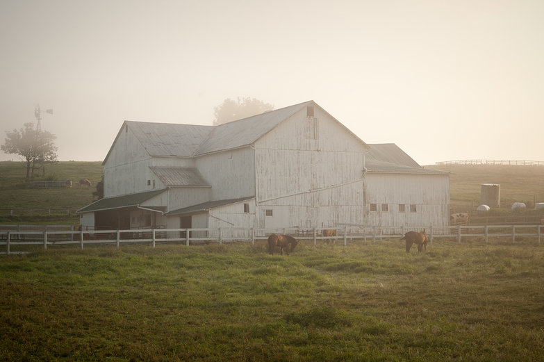 Misty Amish Farm