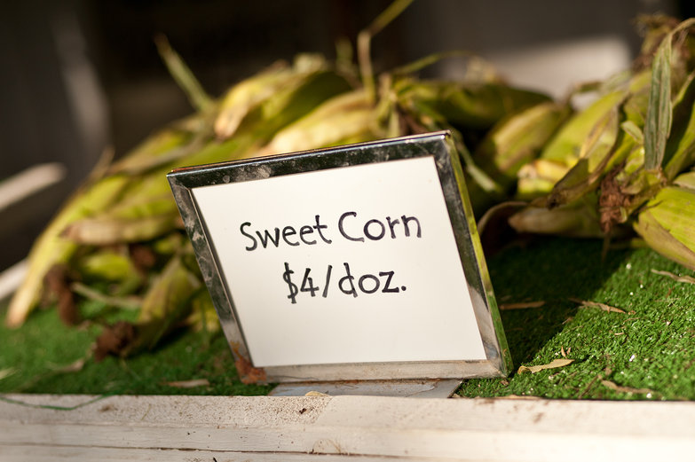 Homegrown Sweet Corn for Sale