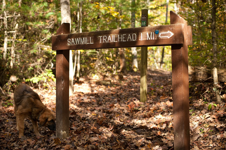Sawmill Trailhead Sign