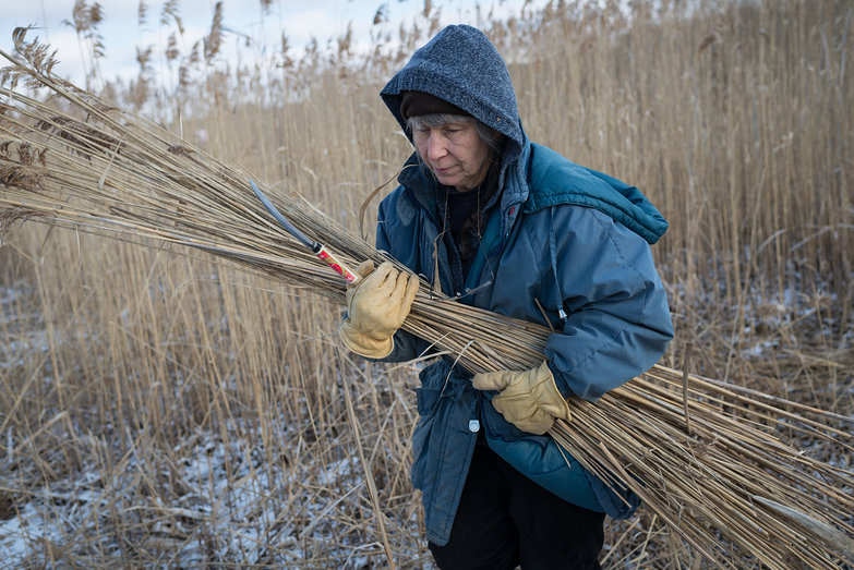 Deanne Carrying Reeds