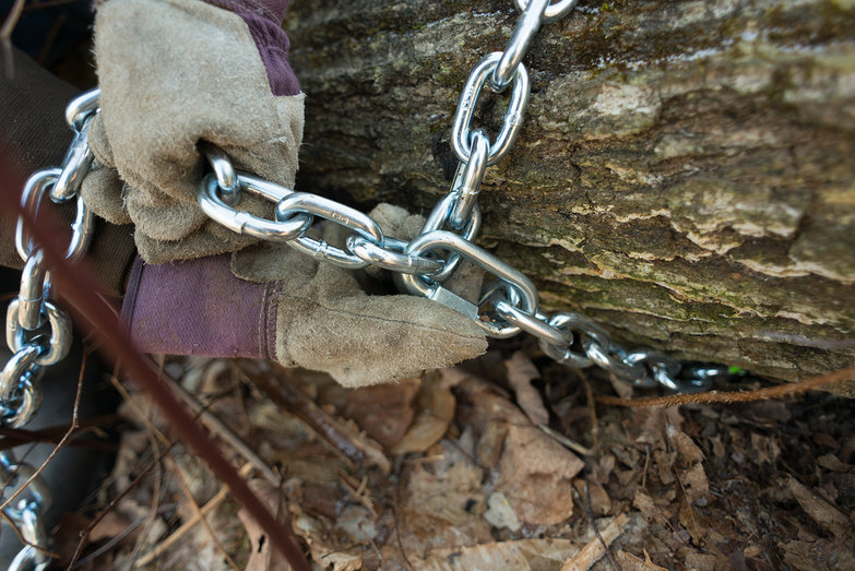 Attaching Tow Chain to Tree