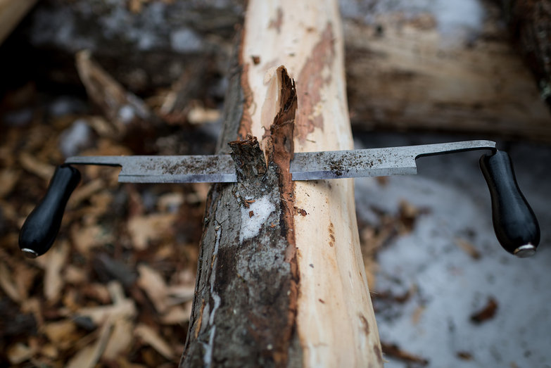Draw Knife in Tree Bark