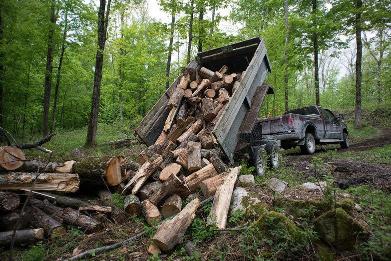 Dump Trailer Dumping Wood
