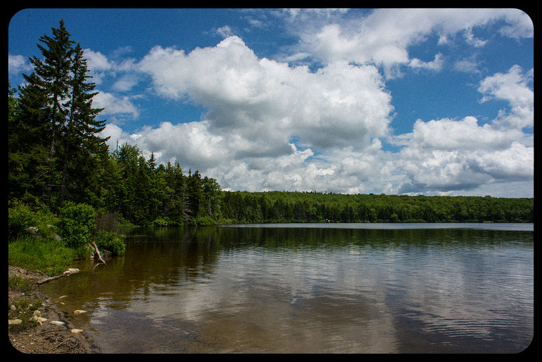 Grout Pond, Green Mountain National Forest