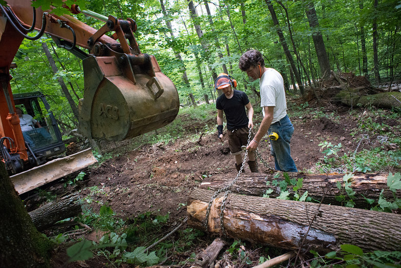 Rick, Tyler & Peter Dragging Logs Out of Our Woods