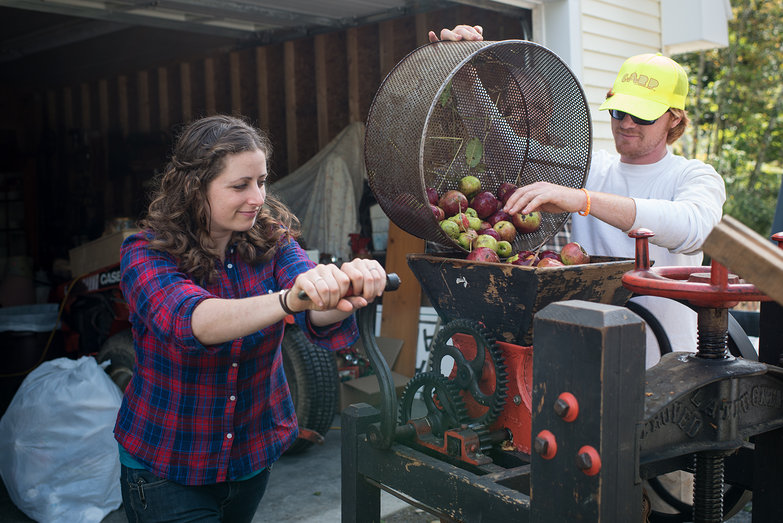 Tara Milling Apples for Cider