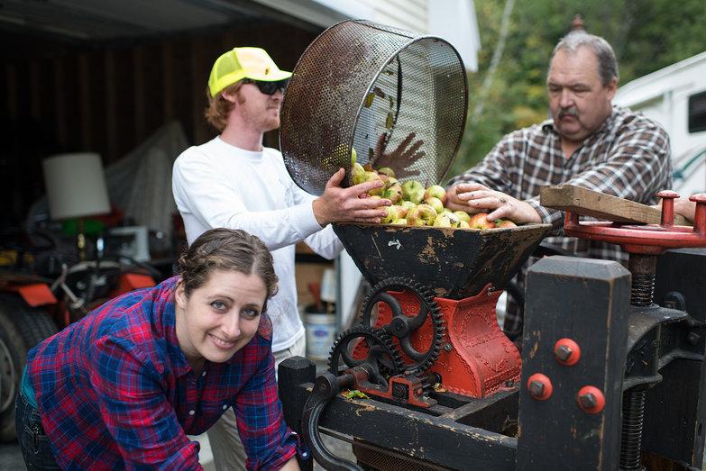 Tara Milling Apples for Cider