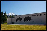 Mount Shasta High School (Bear Country)